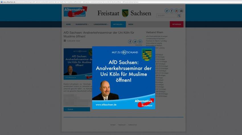 NUR ALS ZITAT Screenshot/ AFD/ Analverkehrsseminar